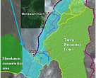 This map shows the explored trekking system. The Bkt Teraja Protection forest reserve and proposed extension area are in between the Labi road and LoggingRoadEast. There are many waterfalls and hiking treks (Brown = unmarked path, Orange = more difficult hike or animal trail, Red=hard trek, Blue = river scramble). Nearly all ridges have a kind of trail (orange) that is or has been used by seismic survey staff, military, poachers, or animals.  Map. Location of trails walked in the survey area (Teraja Protection forest and proposed extension). Note that most trails and waterfalls are within the proposed extension.