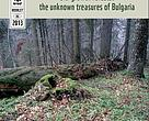 Old-growth forests: the unknown treasures of Bulgaria