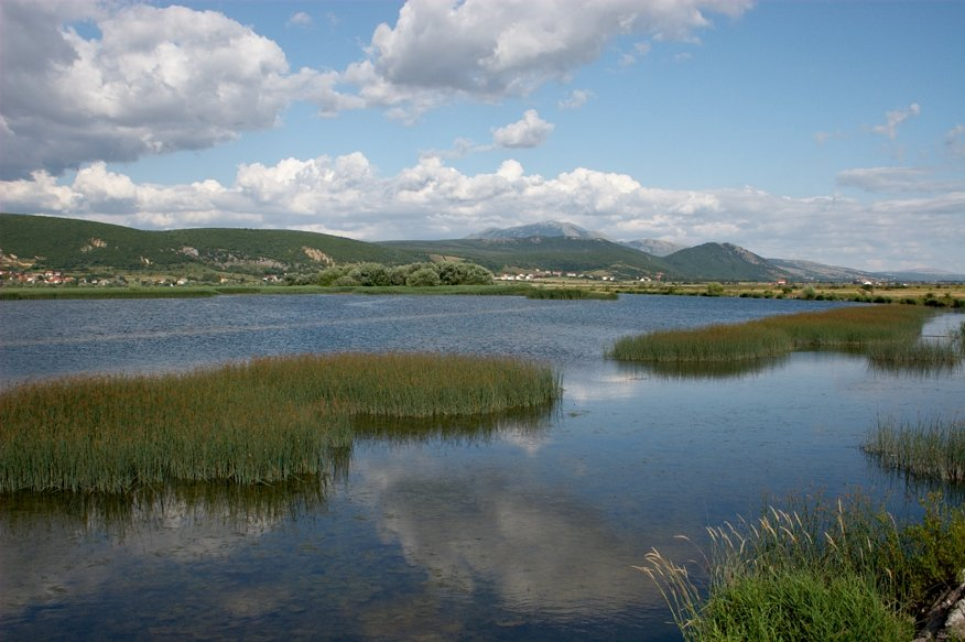 Bardaca Wetland, Bosnia and Herzegovina. This Ramsar site in the Danube River Basin comprises exceptionally important habitats and is a rare example of a river with intact floodplains.
