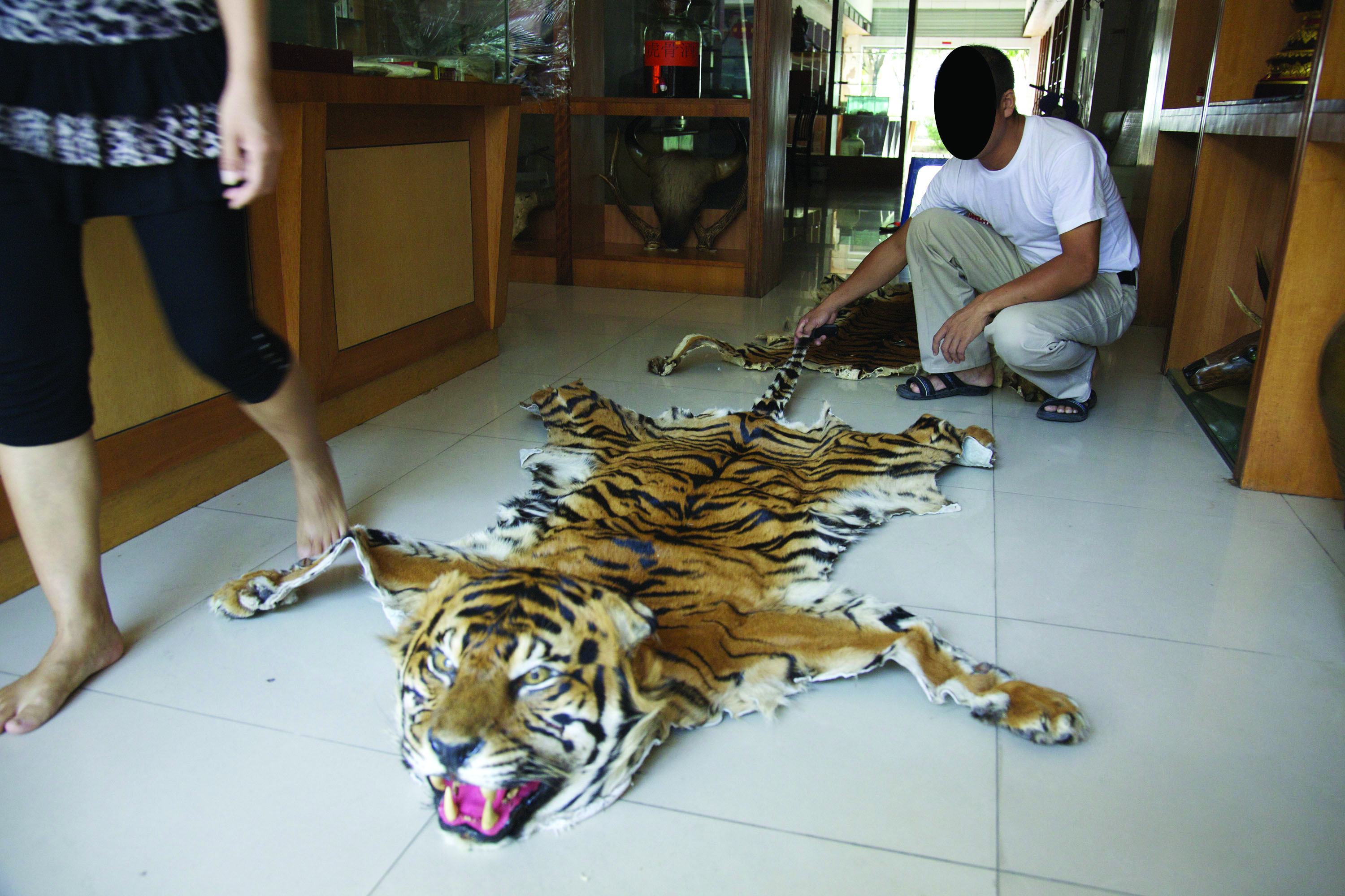 myanmar border markets act as deadly trade gateway for tigers wwf