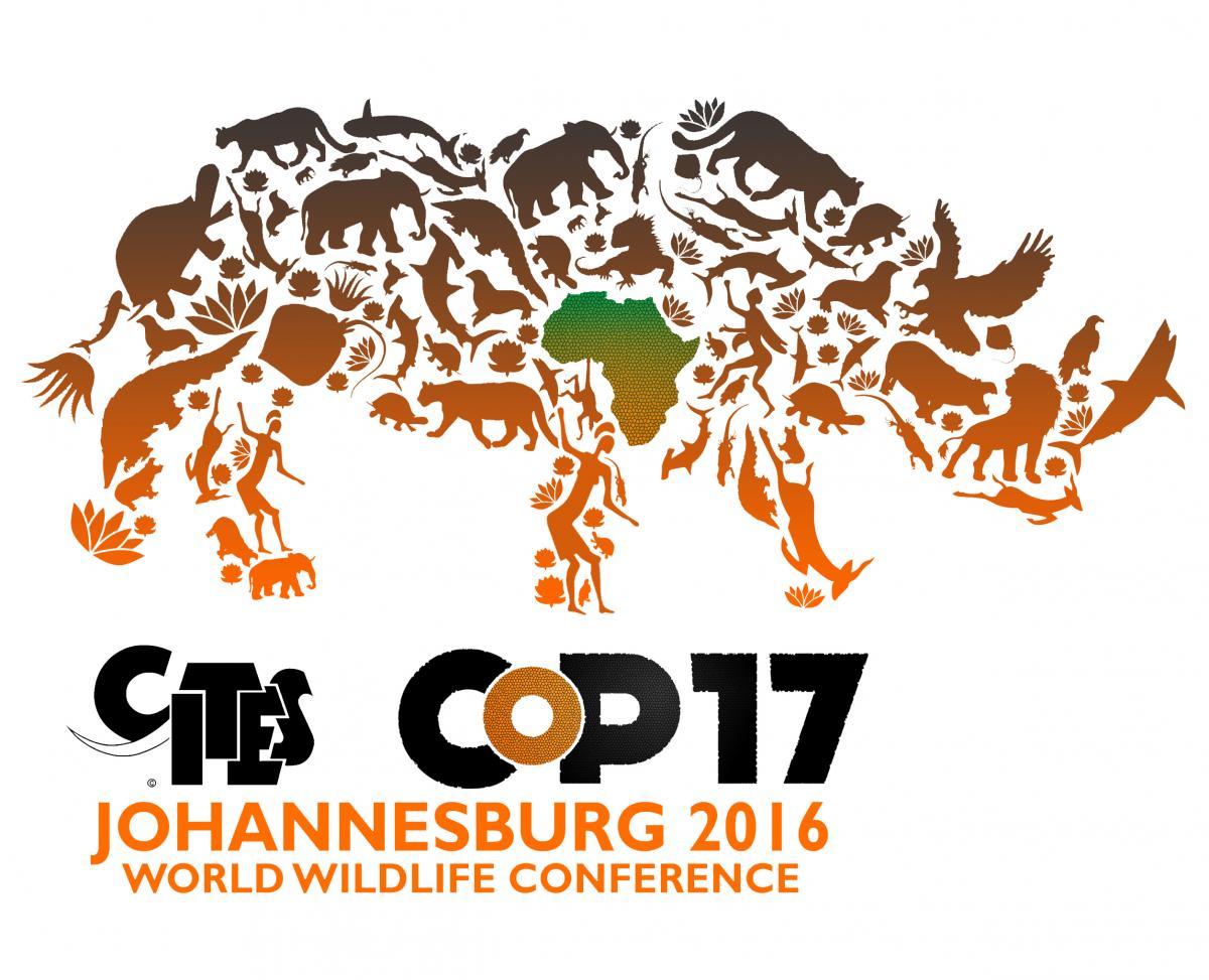 southern africa map with World Takes Bold Steps To Protect Wildlife on Location additionally 23419 Mountain Zebra additionally Bouvetoya moreover 23420 Oryx On Etosha Pan as well Oribi Gorge.