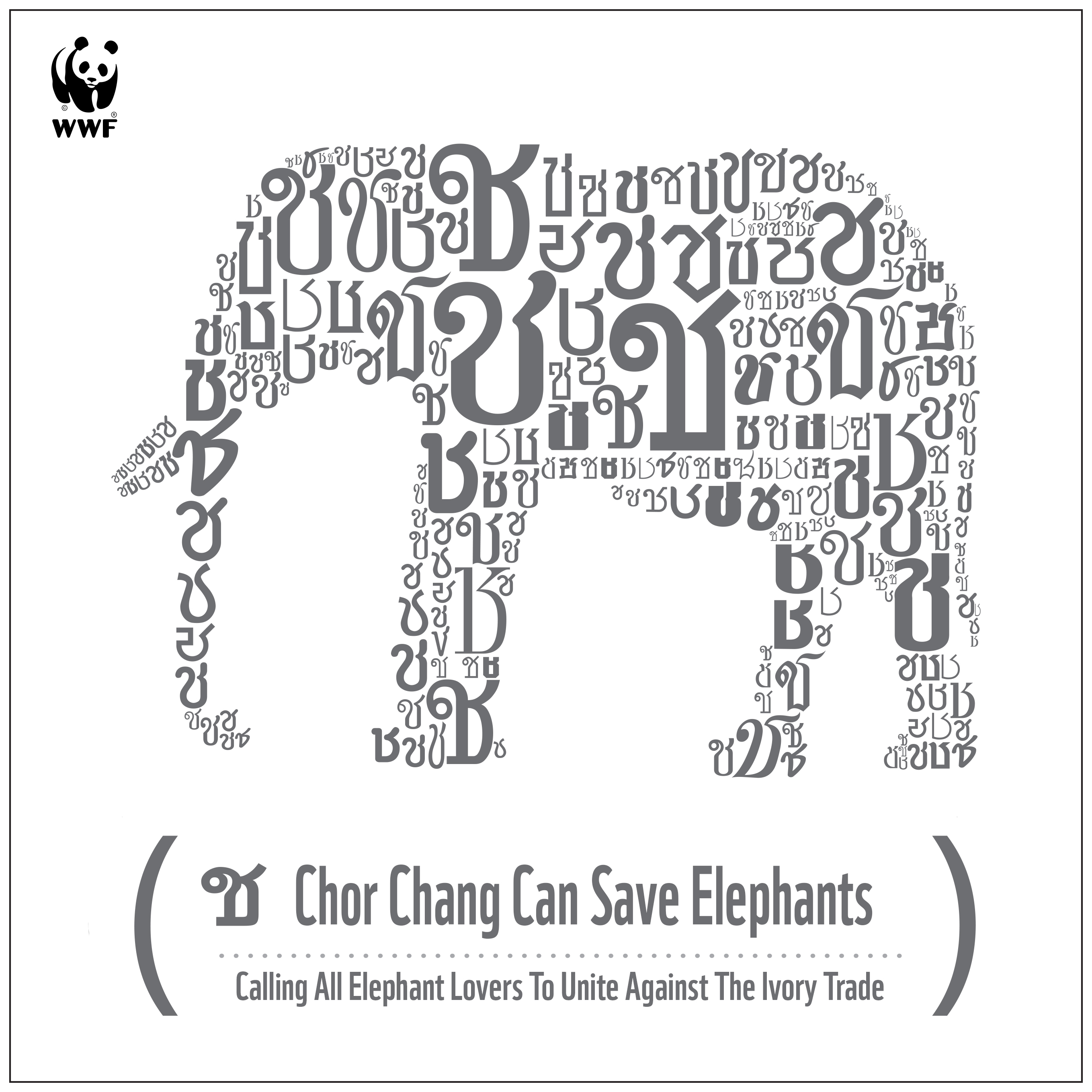 Boost For Worlds Elephants From Chor Chang Campaign And Legislation