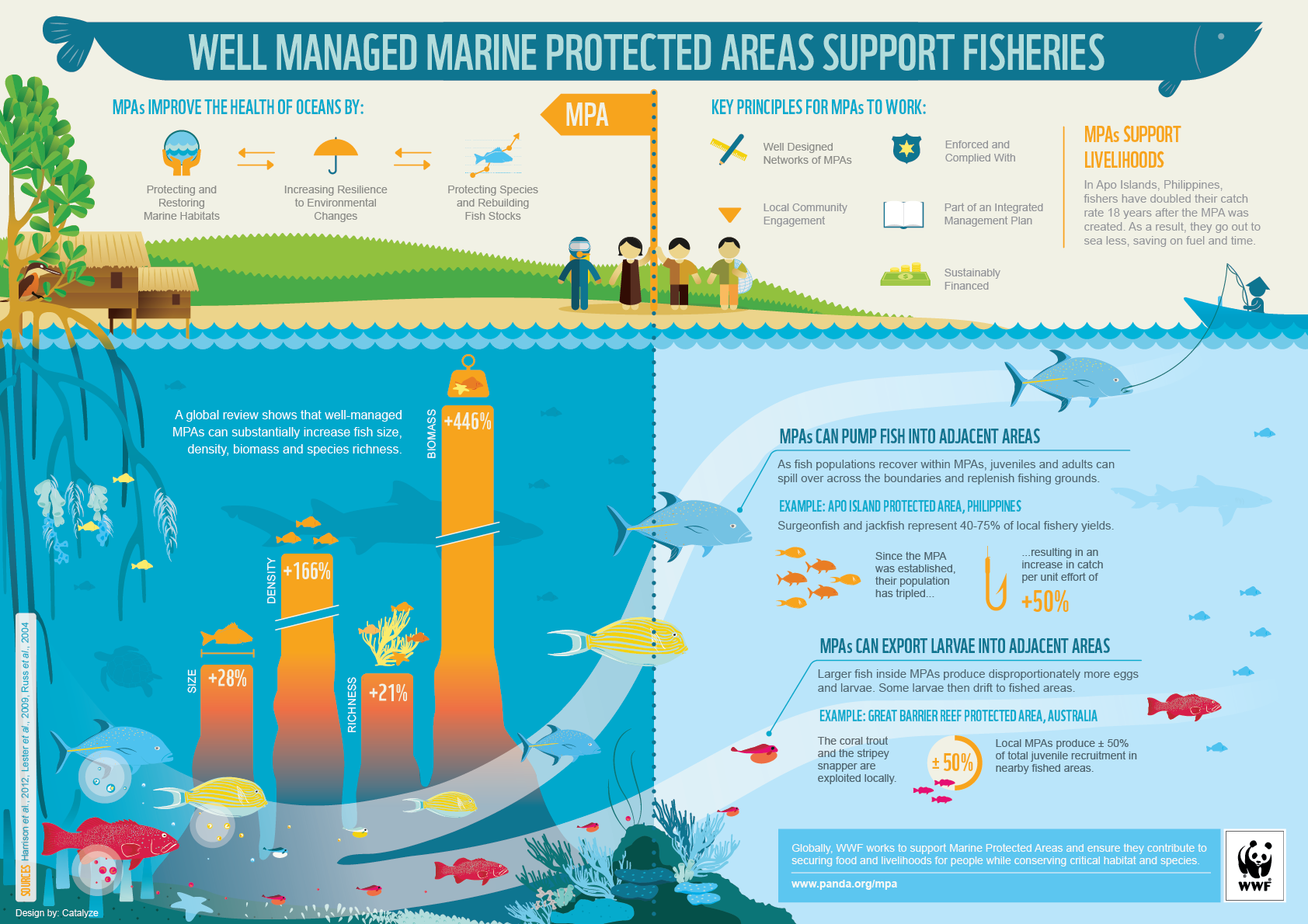 how can we protect marine life You can also write to your elected representatives to encourage them to support legislation that will protect marine life and the ocean many of the organizations listed will help you compose a letter, and can even tell you who your representatives are » more.