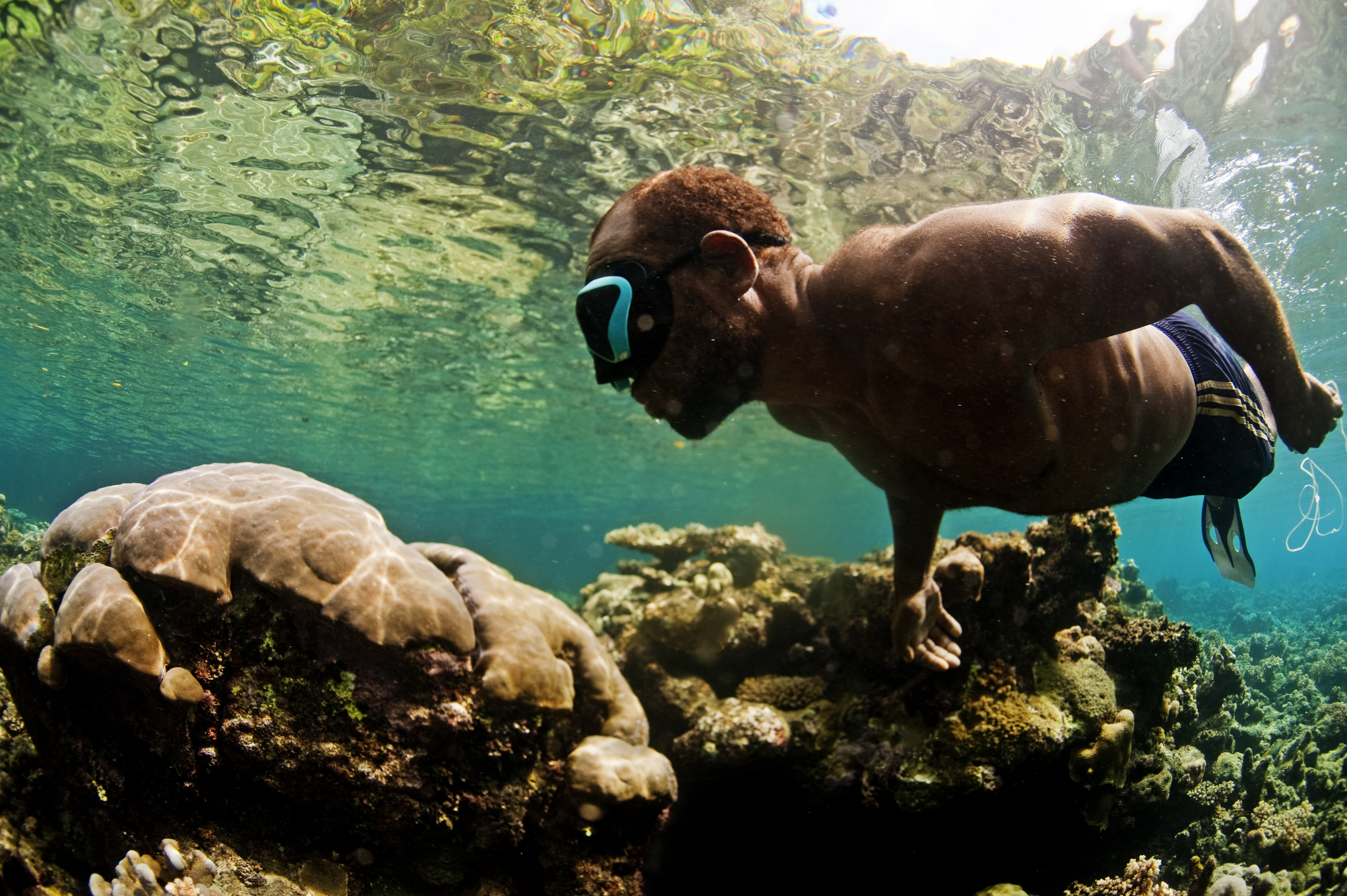 Gizo ghizo island volvoab for Solomons island fishing report