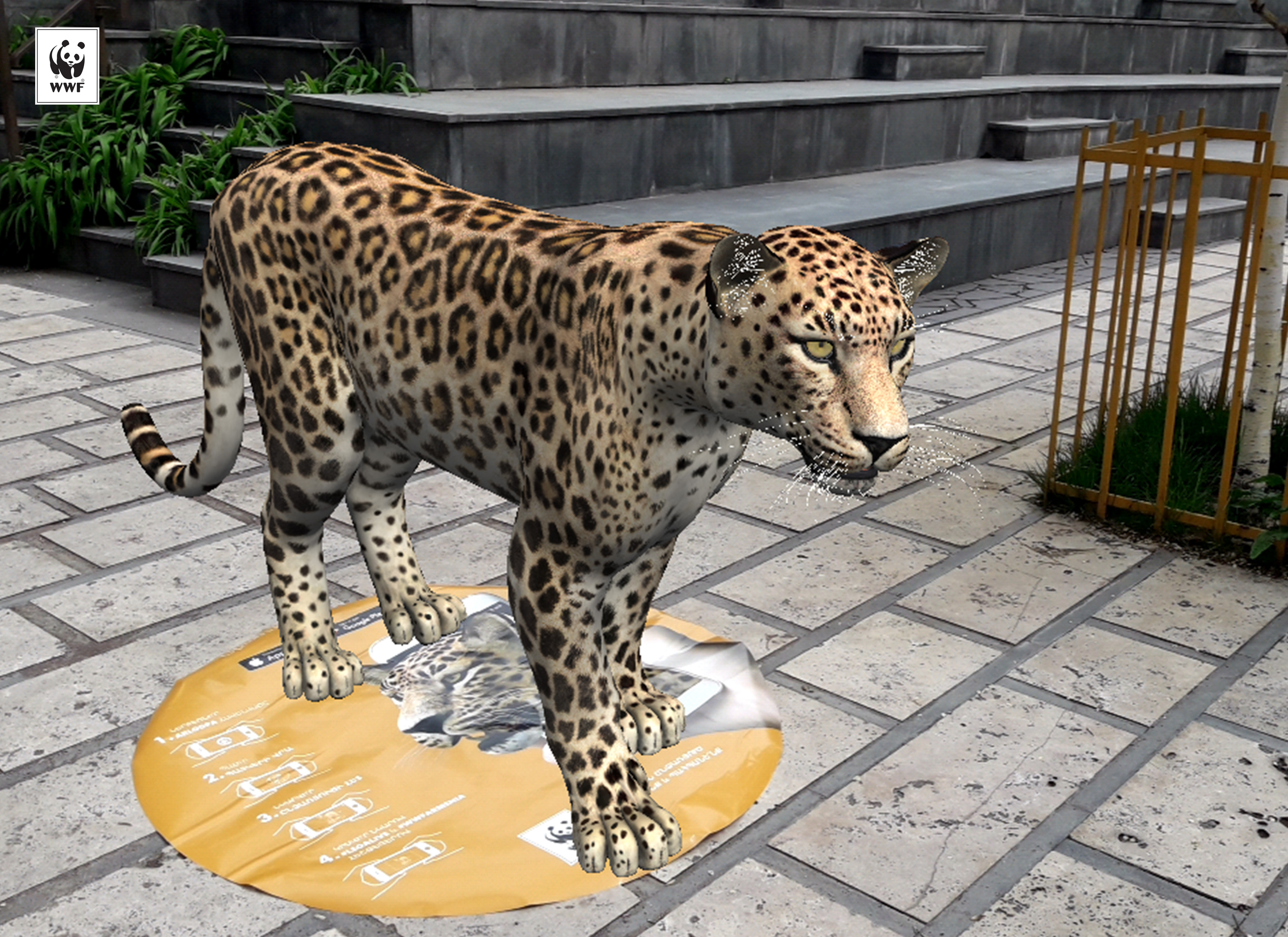 Take A Photo With The Leopard Environmental Information Campaign