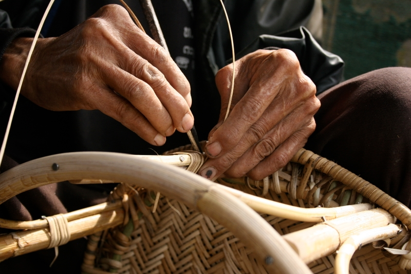 Wwf Showcases Sustainable Rattan Use Amid Design Revival Wwf