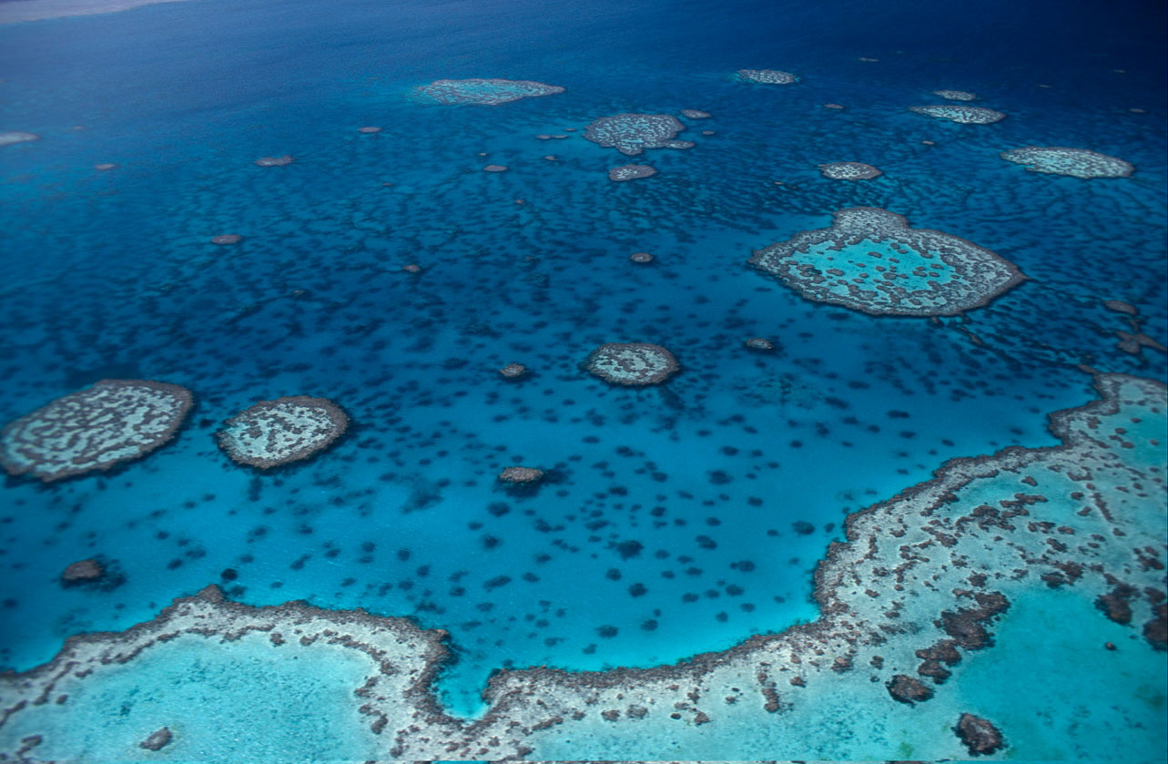Great barrier reef scorecard highlights risk to world for Great pictures of the world