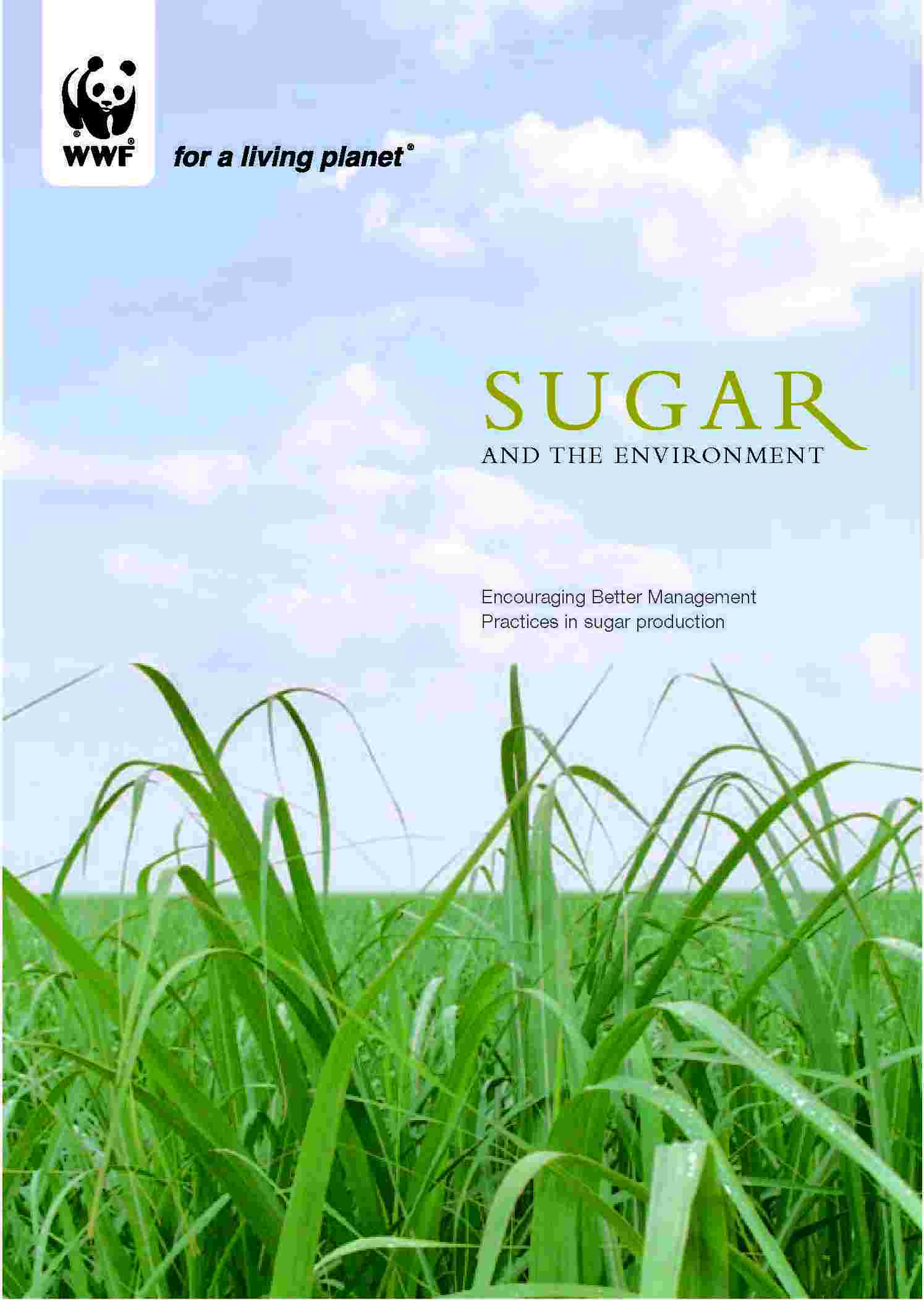 sugar and the environment encouraging better management practices