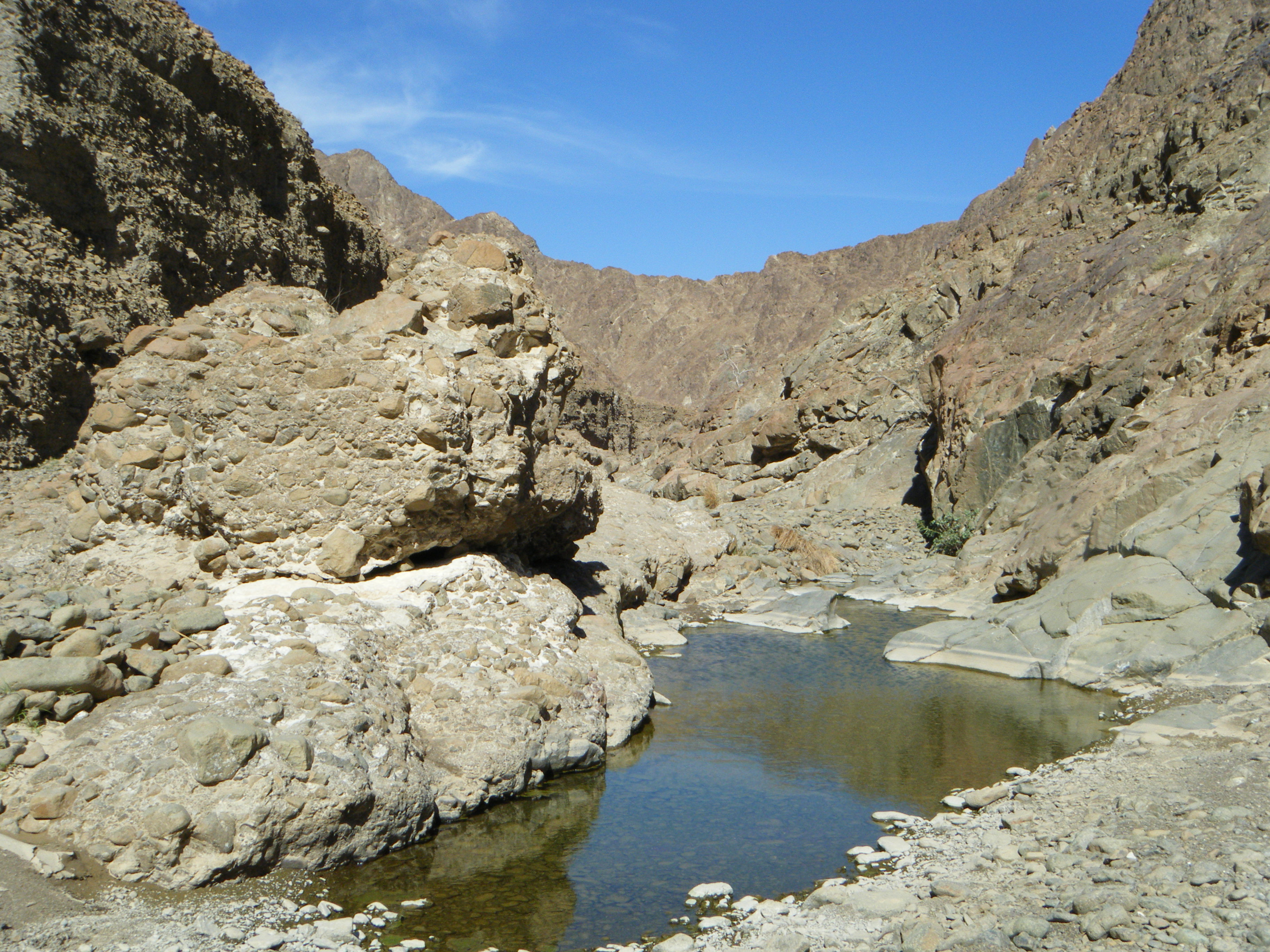 Emirates Wildlife Society-WWF Congratulates the Government of Fujairah on the addition of Wadi Wurayah to UNESCO's World Network of Biosphere Reserves