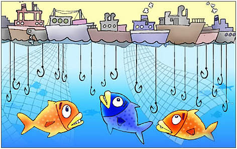 Environmental own goals  OverfishingOverfishing Facts