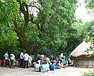 Chirindzene villagers making offerings at a sacred tree.