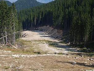 One of the illegally built ski runs in Pirin National Park.