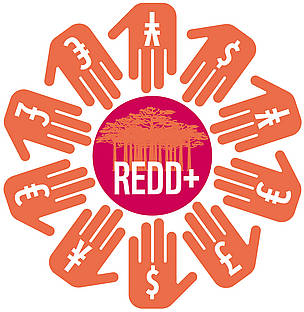 REDD+ requires adequate, predictable funding.