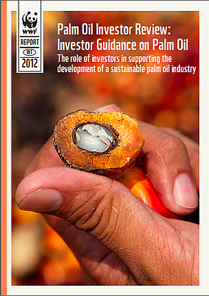REPORT: Palm Oil Investor Review 2012
