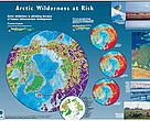 Pan Arctic View poster
