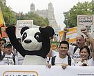 WWF members march at the People's Climate march in New York.