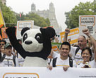 WWF members at the People's Climate march in New York