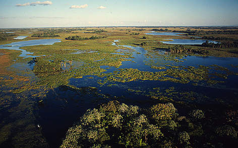 Major Wetlands Of The World Wwf