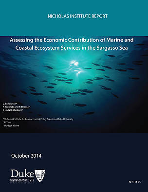 STUDY: Economic valuation of the ecosystem services of the Sargasso Sea