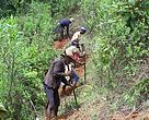Community members restoring forests in the Fandriana-Marolambo landscape in Madagascar