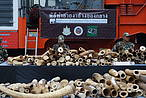 Illegal ivory stockpile ready for destruction in Bangkok © WWF-Thailand