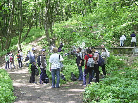 Volunteers in Shumensko Plato Nature Park during WWF's National Day of the Nature Parks 2011 rel=