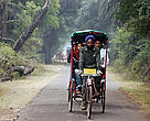 Cycle rickshaw exploring the sights of Kaledeo National Park