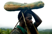 Woman carrying pumpkin. / ©: Brent Stirton/Getty Images/WWF-UK