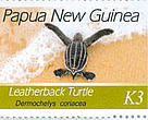 The marine turtle stamps are available in post offices throughout Papua New Guinea.
