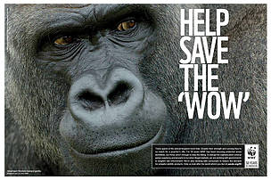 © NaturePL.com / T.J. Rich / WWF