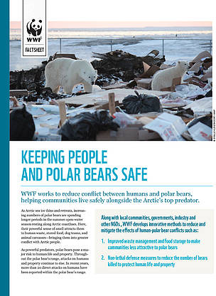 Keeping people and polar bears safe