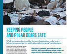 Polar Bear Conflict Factsheet