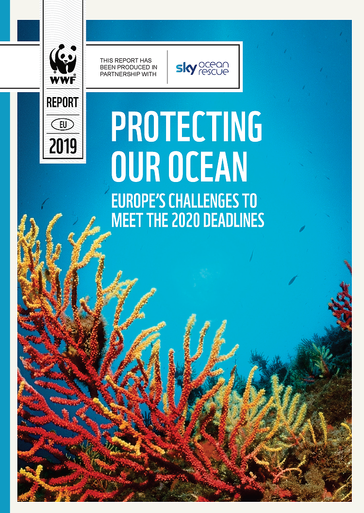 Protecting Our Ocean: Europe's challenges to meet the 2020 deadlines