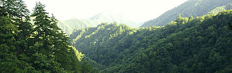 The Qinling Mountains. rel=