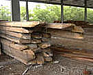 Ramin timber smuggled from Indonesia, following a seizure by customs in Port Kelang, Peninsular Malaysia, 2003.