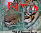 Top Ten Most Wanted Endangered Species in the Markets of the Golden Triangle 2017 report