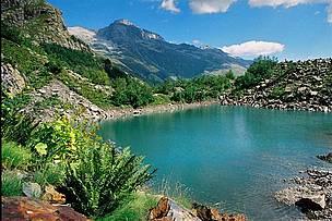 The Caucasus Ecoregion   WWF