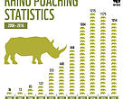 Rhino poaching figures over time graph - South Africa
