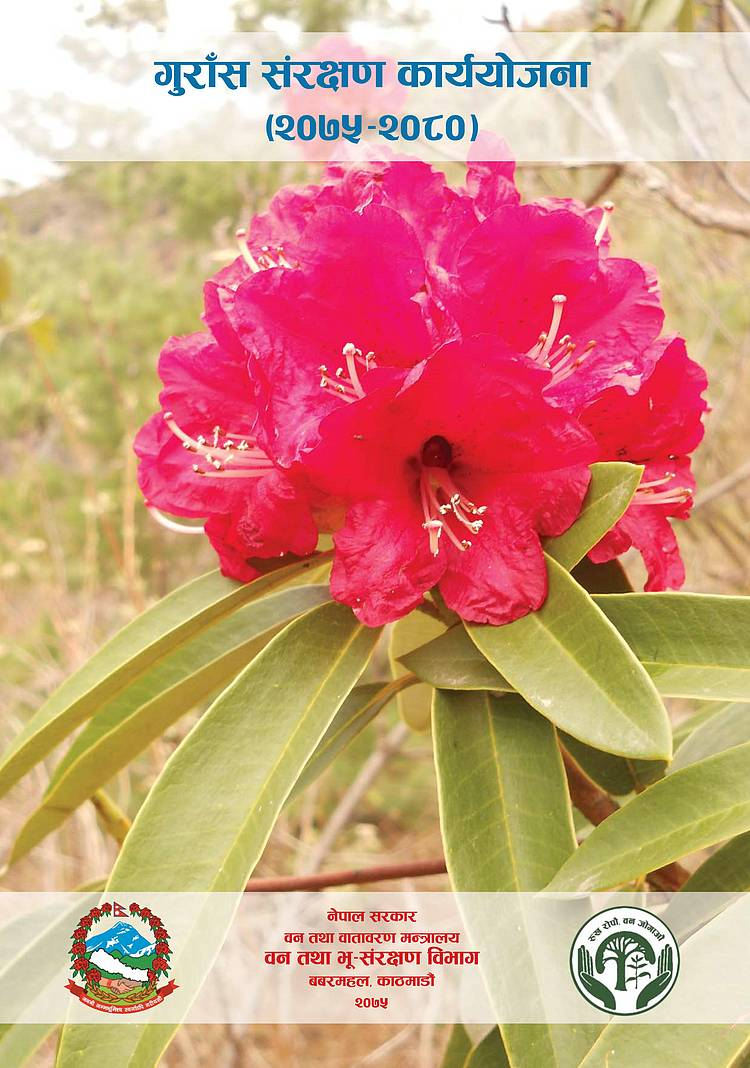 Rhododendron Conservation Action Plan (2075-2080)