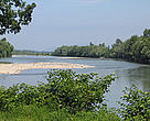 The Tisza River at the Romanian-Hungarian border.