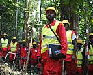 Workers at an FSC-certified forest concession in the Congo Basin.