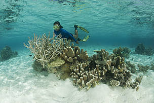 REPORT: Investment Opportunities for Sustainable Nature-based Tourism in the Coral Triangle