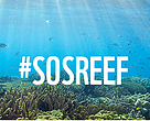 Help save the reef
