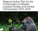 Regional Conservation Action Plan for western lowland gorillas and central chimpanzees (2015-2025)