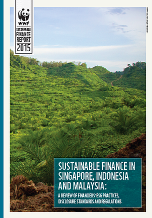 REPORT: Sustainable finance in Singapore, Malaysia and Indonesia: A review of financiers' ESG practices, disclosure standards and regulations