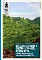 Report Sustainable finance in Singapore, Malaysia and Indonesia: A review of financiers´ESG practices, Disclosure standards and Regulations © WWF-MALAYSIA / MAZIDI ABD GHANI