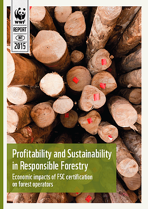 Report: FSC certification yields financial benefits for tropical forest businesses