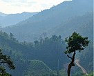 The current access road for the planned Dawei road, near the area of Elephant Cry Hill.