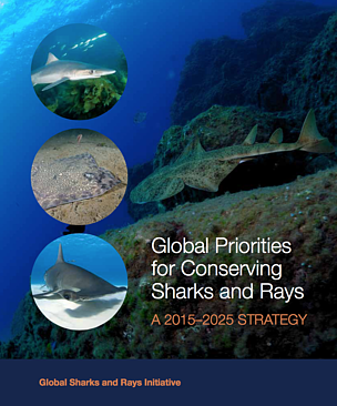 © WWF / TRAFFIC / WCS / Shark Trust / Shark Advocates International