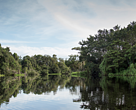 Part of the massive new Ramsar protected wetlands complex in Ecuador